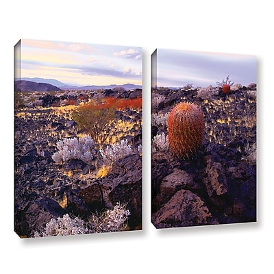 ArtWall 'In The Mojave' 2-Piece Gallery-Wrapped Canvas Set 18
