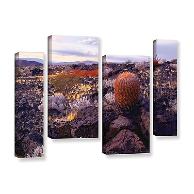 ArtWall 'In The Mojave' 4-Piece Gallery-Wrapped Canvas Staggered Set 36