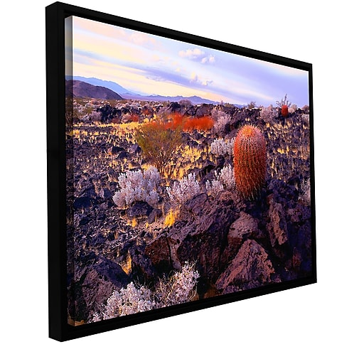 "ArtWall ""In The Mojave"" Gallery-Wrapped Canvas 14"" x 18"" Floater-Framed (0uhl110a1418f)"