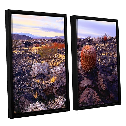 """ArtWall 'In The Mojave' 2-Piece Canvas Set 24"""" x 32"""" Floater-Framed (0uhl110b2432f)"""