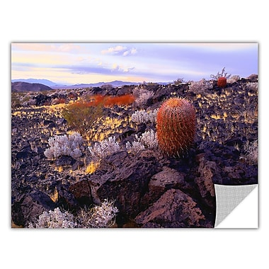 ArtWall 'In The Mojave' Art Appeelz Removable Wall Art Graphic 36