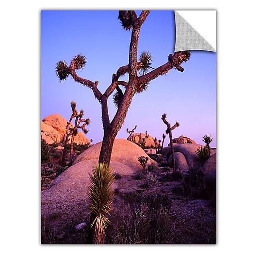 "ArtWall ""Joshua Tree Twilight"" Art Appeelz Removable Graphic Wall Art 18"" x 24"" (0uhl112a1824p)"