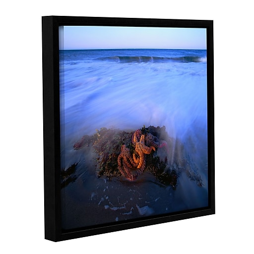 "ArtWall ""Morning Sea Stars"" Gallery-Wrapped Canvas 14"" x 14"" Floater-Framed (0uhl114a1414f)"