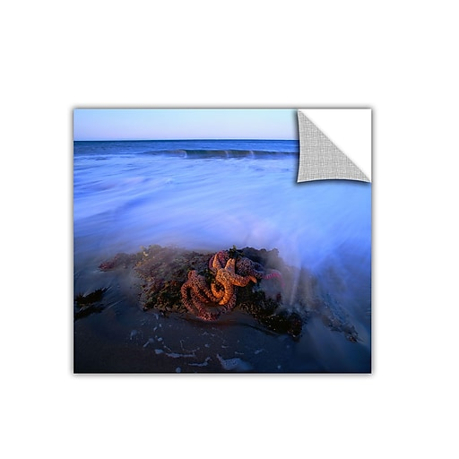 "ArtWall ""Morning Sea Stars"" Art Appeelz Removable Graphic Wall Art 36"" x 36"" (0uhl114a3636p)"