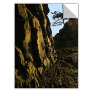 "ArtWall 'Oregon Coast Sunset' Art Appeelz Removable Graphic Wall Art 18"" x 24"" (0uhl116a1824p)"