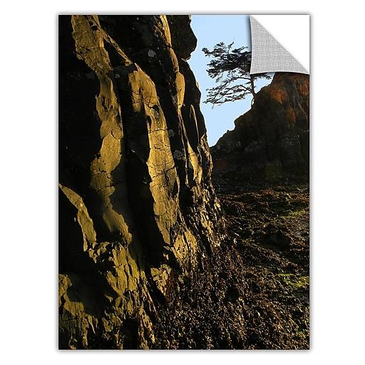 "ArtWall 'Oregon Coast Sunset' Art Appeelz Removable Graphic Wall Art 18"" x 24"" (0uhl116a1824p)"