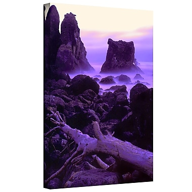 ArtWall 'Patricks Point Twilight' Gallery-Wrapped Canvas 36