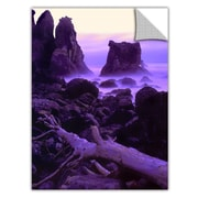 "ArtWall 'Patricks Point Twilight' Art Appeelz Removable Wall Art Graphic 24"" x 32"" (0uhl118a2432p)"