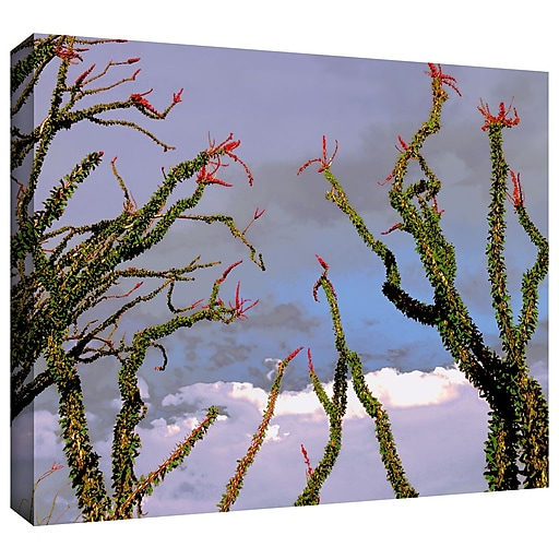 "ArtWall 'Yuma Desert Spring' Gallery-Wrapped Canvas 24"" x 32"" (0uhl121a2432w)"