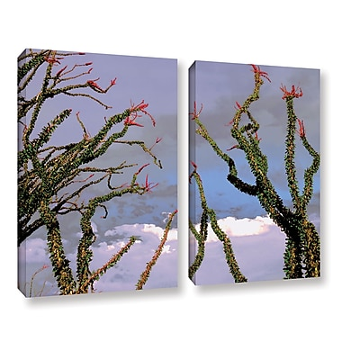 ArtWall 'Yuma Desert Spring' 2-Piece Gallery-Wrapped Canvas Set 18