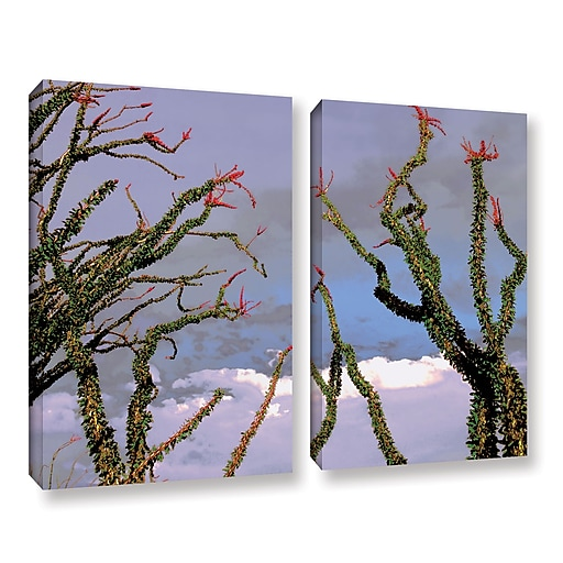 "ArtWall 'Yuma Desert Spring' 2-Piece Gallery-Wrapped Canvas Set 24"" x 32"" (0uhl121b2432w)"