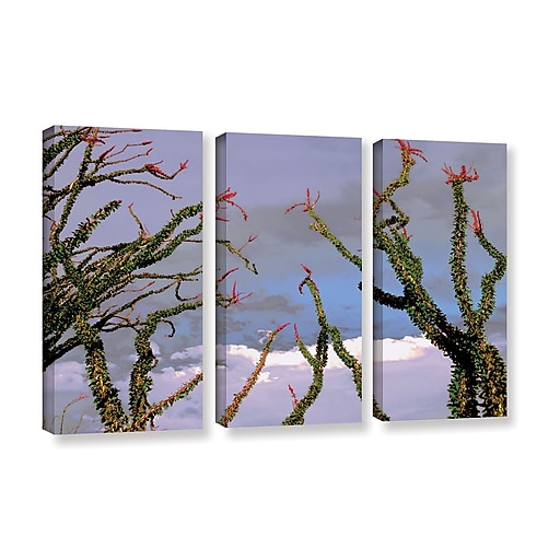 "ArtWall ""Yuma Desert Spring"" 3-Piece Gallery-Wrapped Canvas Set 36"" x 54"" (0uhl121c3654w)"