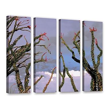 ArtWall 'Yuma Desert Spring' 4-Piece Gallery-Wrapped Canvas Set 36