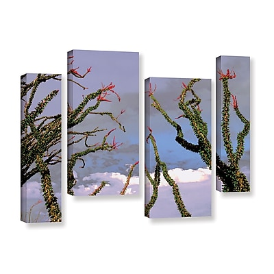 ArtWall 'Yuma Desert Spring' 4-Piece Gallery-Wrapped Canvas Staggered Set 24