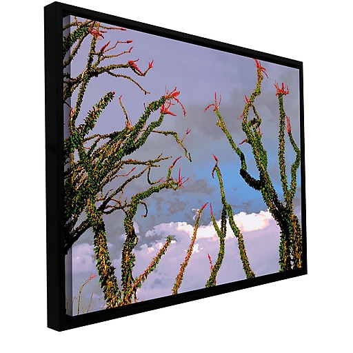"ArtWall ""Yuma Desert Spring"" Gallery-Wrapped Canvas 24"" x 32"" Floater-Framed (0uhl121a2432f)"