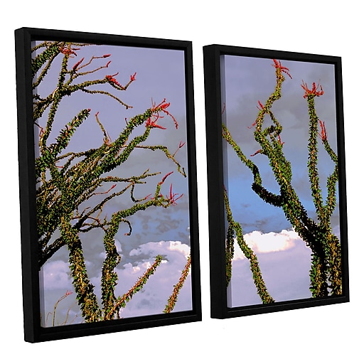 "ArtWall 'Yuma Desert Spring' 2-Piece Canvas Set 24"" x 36"" Floater-Framed (0uhl121b2436f)"