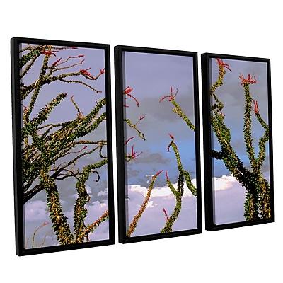 ArtWall 'Yuma Desert Spring' 3-Piece Canvas Set 36