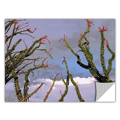 "ArtWall ""Yuma Desert Spring"" Art Appeelz Removable Graphic Wall Art 14"" x 18"" (0uhl121a1418p)"