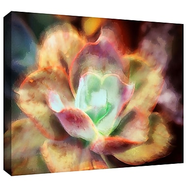 ArtWall 'Anapo Dawn' Gallery-Wrapped Canvas 24