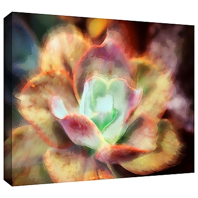 ArtWall 'Anapo Dawn' Gallery-Wrapped Canvas 18