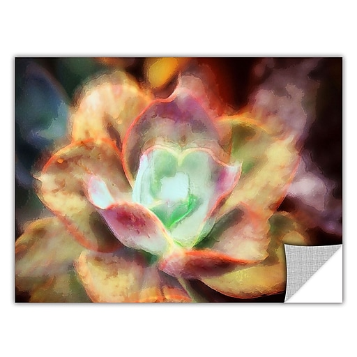 """ArtWall 'Anapo Dawn' Art Appeelz Removable Wall Art Graphic 36"""" x 48"""" (0uhl122a3648p)"""