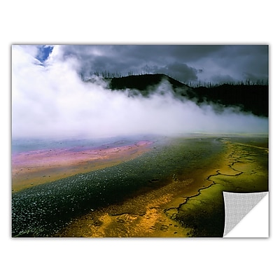 ArtWall 'Approaching Storm' Art Appeelz Removable Wall Art Graphic 24