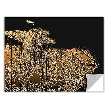 ArtWall 'Break In The Storm' Art Appeelz Removable Wall Art Graphic 18