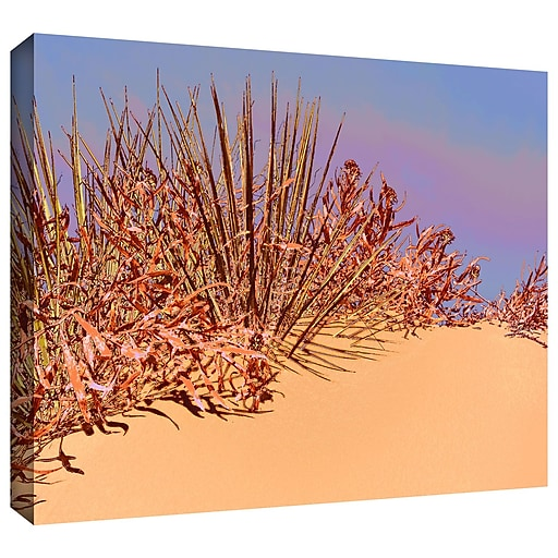 "ArtWall 'Coral Dunes Noon' Gallery-Wrapped Canvas 24"" x 32"" (0uhl129a2432w)"