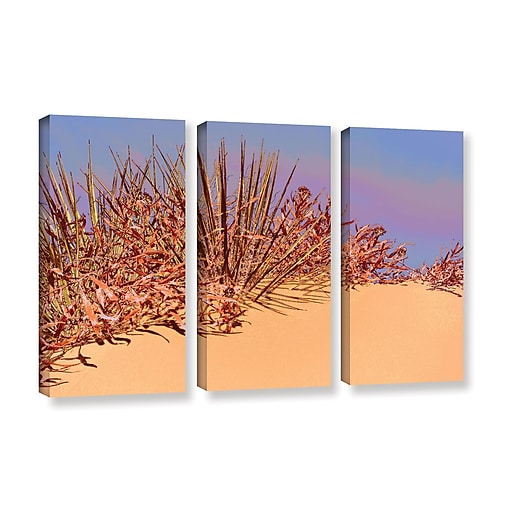 """ArtWall 'Coral Dunes Noon' 3-Piece Gallery-Wrapped Canvas Set 36"""" x 54"""" (0uhl129c3654w)"""