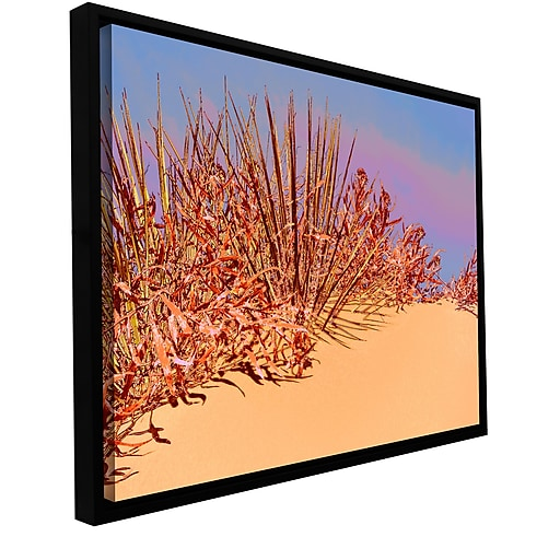 "ArtWall 'Coral Dunes Noon' Gallery-Wrapped Canvas 18"" x 24"" Floater-Framed (0uhl129a1824f)"