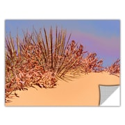 """ArtWall 'Coral Dunes Noon' Art Appeelz Removable Wall Art Graphic 14"""" x 18"""" (0uhl129a1418p)"""