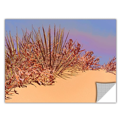 "ArtWall 'Coral Dunes Noon' Art Appeelz Removable Wall Art Graphic 36"" x 48"" (0uhl129a3648p)"