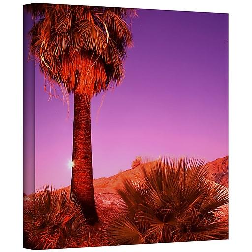 "ArtWall 'Desert Moon' Gallery-Wrapped Canvas 14"" x 14"" (0uhl131a1414w)"