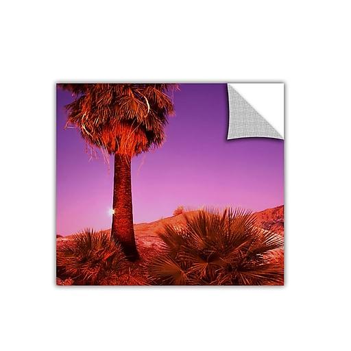 """ArtWall 'Desert Moon' Art Appeelz Removable Wall Art Graphic 24"""" x 24"""" (0uhl131a2424p)"""