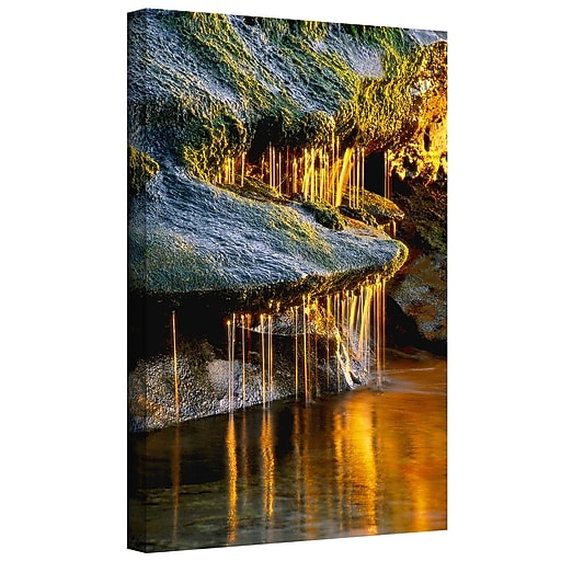 """ArtWall 'Dripping Sunlight' Gallery-Wrapped Canvas 14"""" x 18"""" (0uhl132a1418w)"""