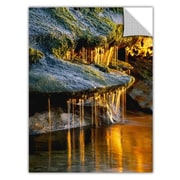 "ArtWall 'Dripping Sunlight' Art Appeelz Removable Wall Art Graphic 14"" x 18"" (0uhl132a1418p)"