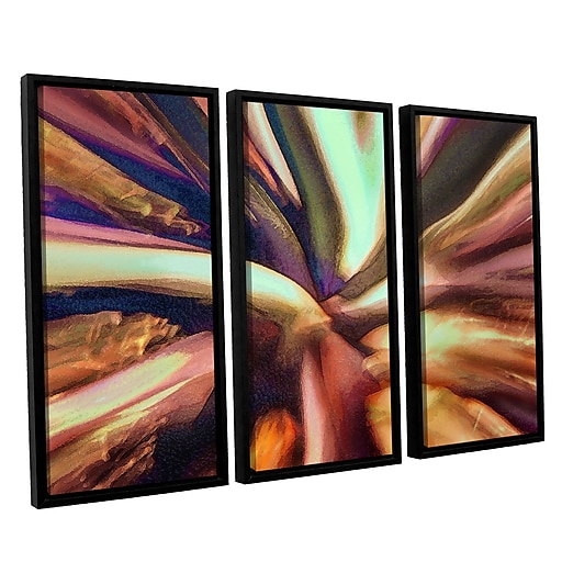 "ArtWall 'Espectro Suculenta' 3-Piece Canvas Set 36"" x 54"" Floater-Framed (0uhl133c3654f)"
