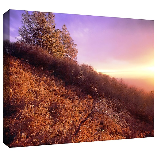 "ArtWall ""Fire Light"" Gallery-Wrapped Canvas 36"" x 48"" (0uhl134a3648w)"