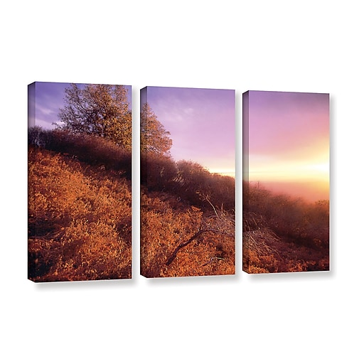 "ArtWall ""Fire Light"" 3-Piece Gallery-Wrapped Canvas Set 36"" x 54"" (0uhl134c3654w)"