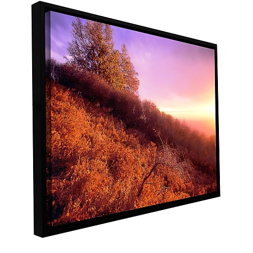"ArtWall 'Fire Light' Gallery-Wrapped Canvas 18"" x 24"" Floater-Framed (0uhl134a1824f)"