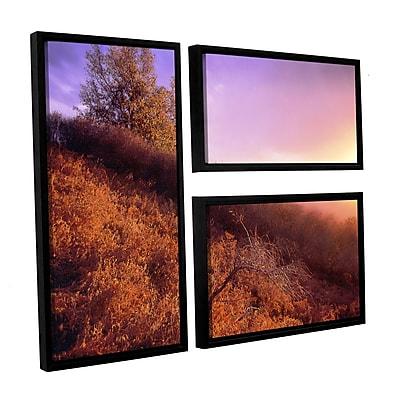 ArtWall 'Fire Light' 3-Piece Canvas Flag Set 36