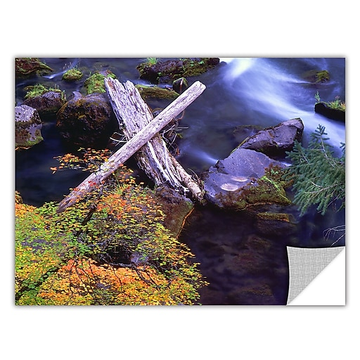 "ArtWall 'Rogue River Falls' Art Appeelz Removable Wall Art Graphic 36"" x 48"" (0uhl137a3648p)"