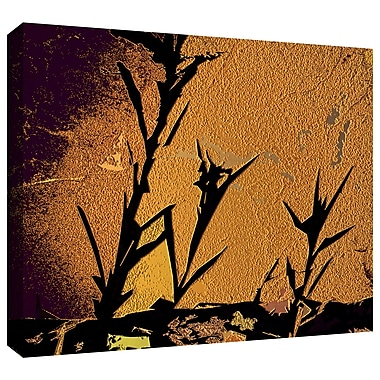 ArtWall 'Shadow Rock' Gallery-Wrapped Canvas 24