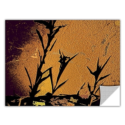 ArtWall 'Shadow Rock' Art Appeelz Removable Wall Art Graphic 24