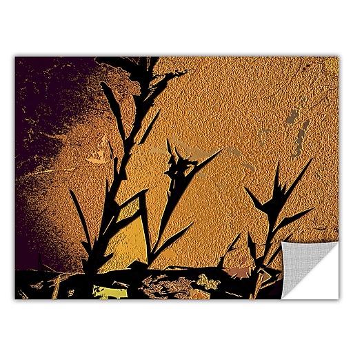 "ArtWall 'Shadow Rock' Art Appeelz Removable Wall Art Graphic 24"" x 32"" (0uhl138a2432p)"