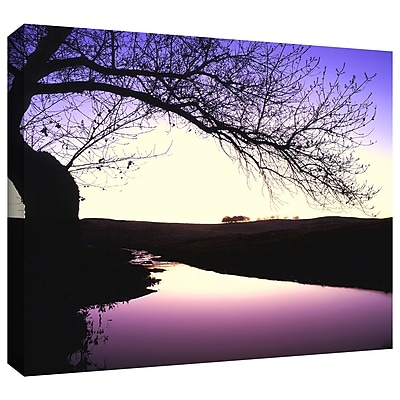 ArtWall 'Squaw Valley Twilight' Gallery-Wrapped Canvas 24