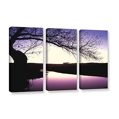 ArtWall 'Squaw Valley Twilight' 3-Piece Gallery-Wrapped Canvas Set 36
