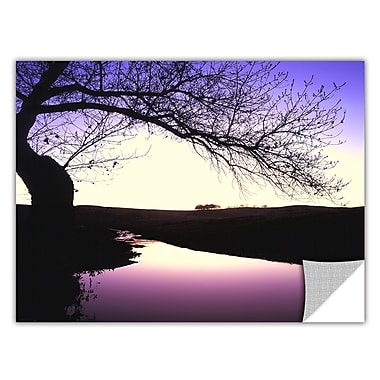 ArtWall 'Squaw Valley Twilight' Art Appeelz Removable Wall Art Graphic 18