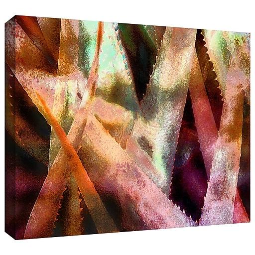 """ArtWall 'Suculenta Paleta 2' Gallery-Wrapped Canvas 36"""" x 48"""" (0uhl140a3648w)"""