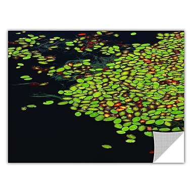 ArtWall 'Tenmile Lake' Art Appeelz Removable Wall Art Graphic 14